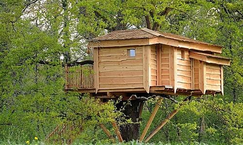 La Cabane du Vieux Chêne - Hébergement insolite