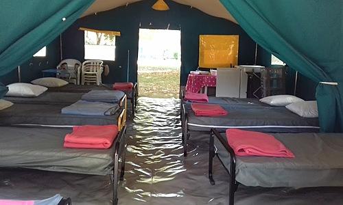 Les Ombrages de L'Adour - Camping